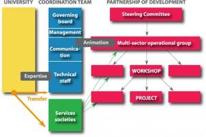 Catalyse-method-Governace